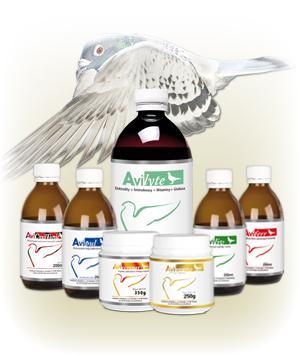 Sezon lotowy - AVI ZESTAW LOTOWY DLA Młodych (produkty na loty) (1)